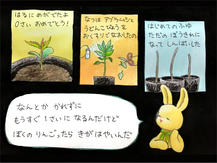 春に芽が出たよ0歳おめでとう。夏はアブラムシとうどん粉病をお薬で治したの。初めての冬、ただの棒切れになって心配した。なんとか枯れずにもうすぐ1歳になるんだけど、ぼくのりんごったら気が早いんだ。